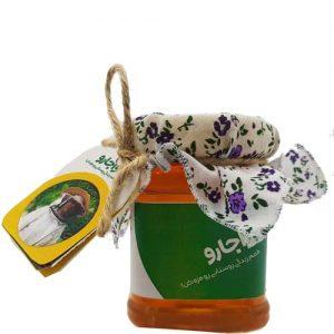 عسل درمانی خانم حامیان
