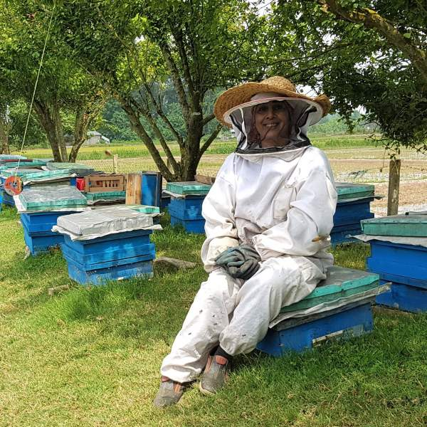 خرید مستقیم عسل از زنبوردار