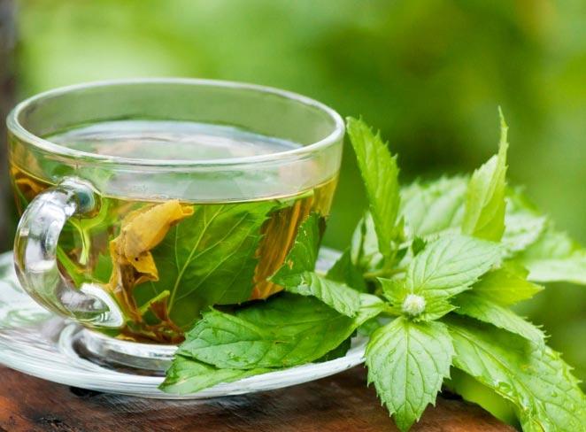 چای سبز خواص مختلفی برای اعضای مختلف بدن دارد.