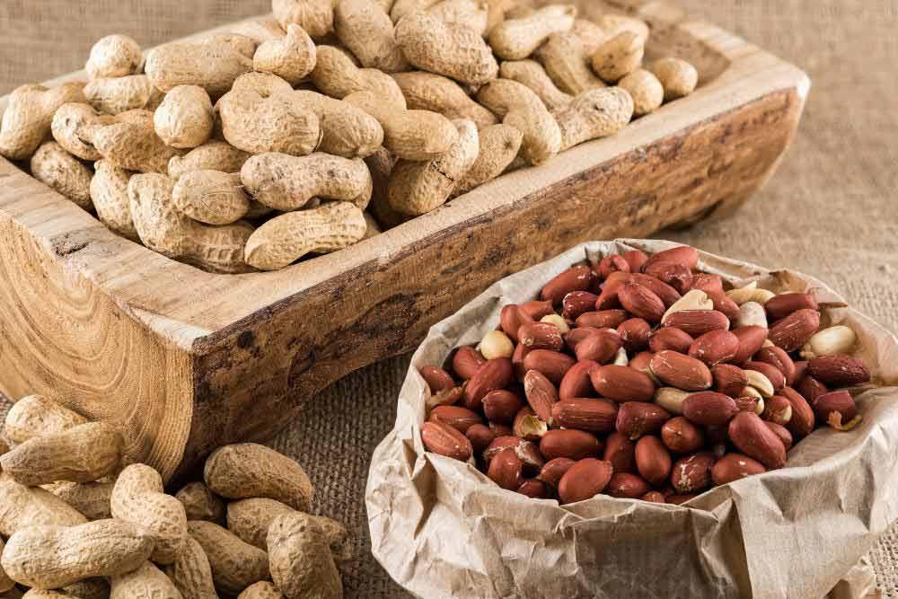 بادام زمینی یک ماده مفید و بسیار مغذی است.