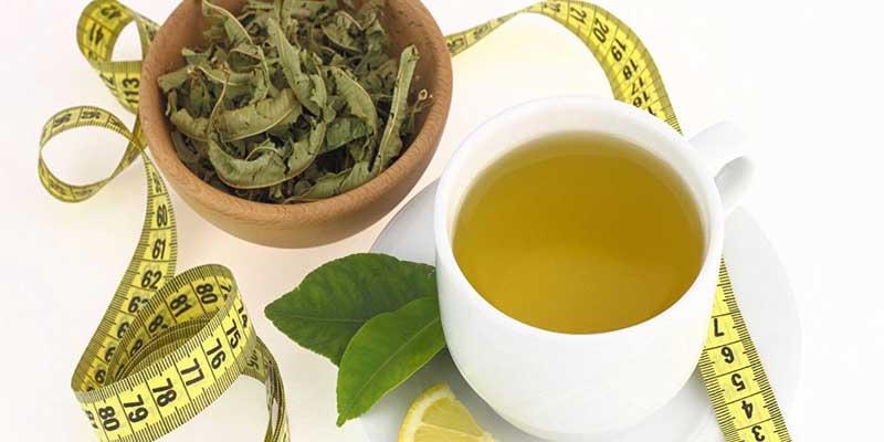 مصرف چای سبز برای رسیدن به وزن مناسب توصیه میشود.
