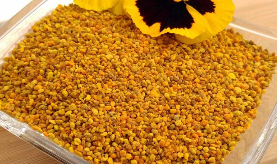 تاثیر خواص گرده گل برای درمان بیماری کولیت روده بینظیر است.