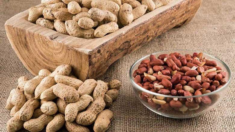کالری بادام زمینی در تناسب اندام نقش مهمی دارد.