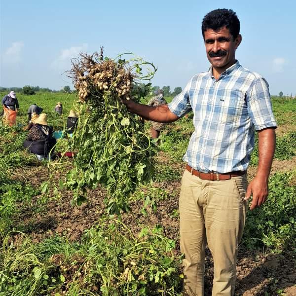 کره بادام زمینی برای لاغری