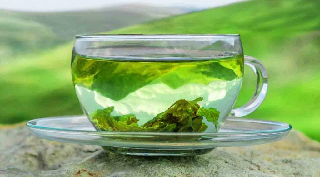 چای سبز علی رغم فواید متعددش میتواند برای بدن مضر هم باشد.