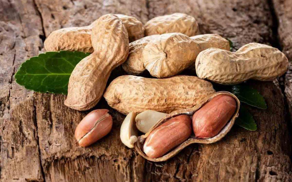 مصرف بادام زمینی از پوکی استخوان در زمان پیری جلوگیری می کند.