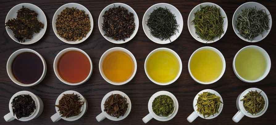 انواع چای واقعی از یک گیاه تهیه می شود.