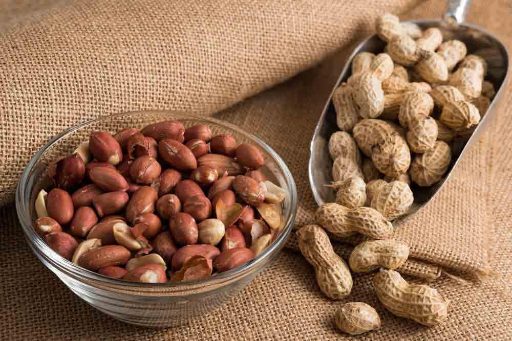 کره بادام زمینی یک نوع ماده غذایی پروتئینی به حساب میآید.