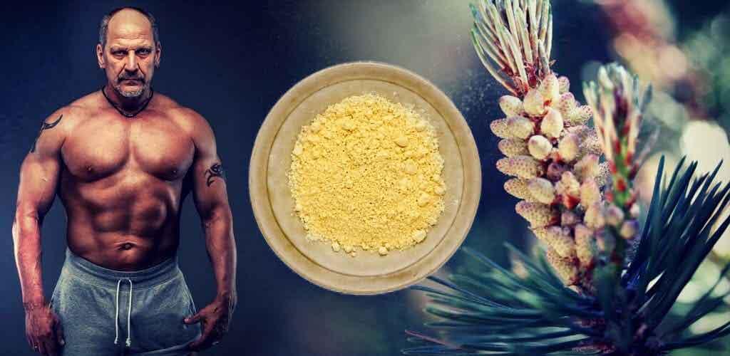 اثرات گرده گل برای بهبود زخمها و عفونتهای بدن بدنسازان در حین تمرینات سنگین بسیار مفید است.