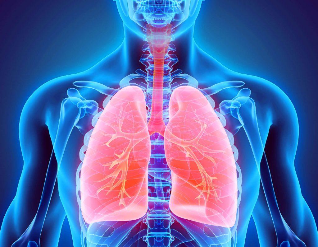 بره موم برای درمان بیماری سل بسیار مفیئد میباشد.