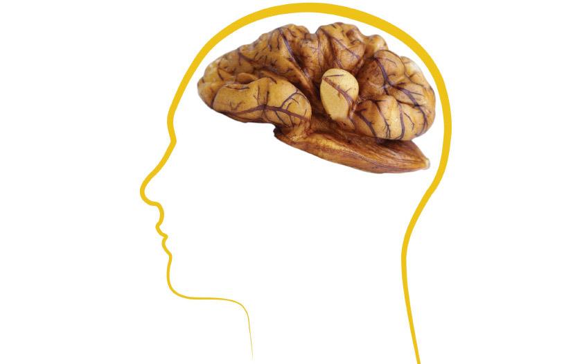 مصرف گردو کاهش علائم افسردگی، افزایش سطح انرژی و بهبود در تمرکز را به همراه دارد.