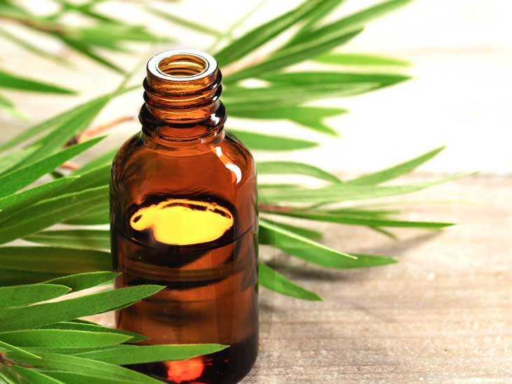 روغن درخت چای برای پوست بسیار مفید میباشد.