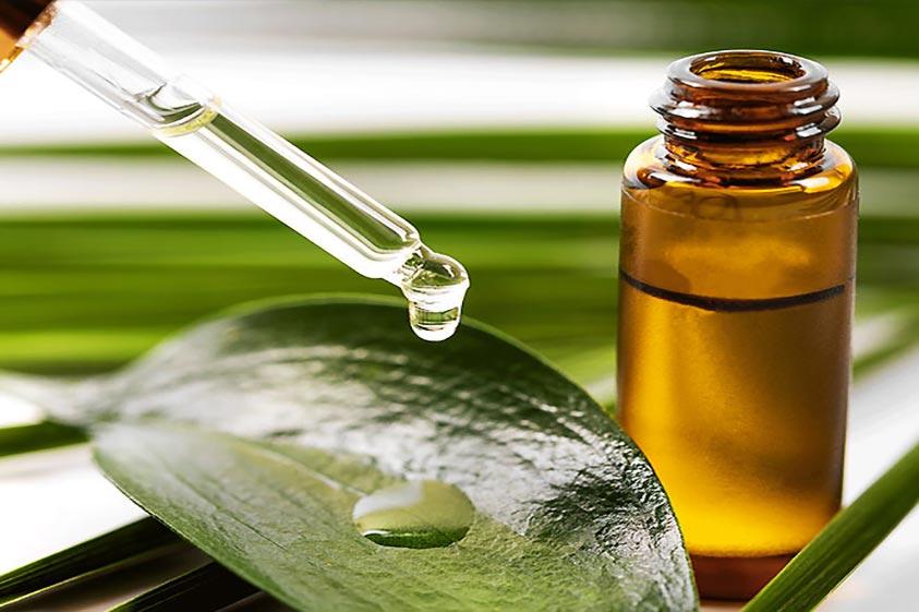 روغن درخت چای برای پوست بسیار سودمند است.