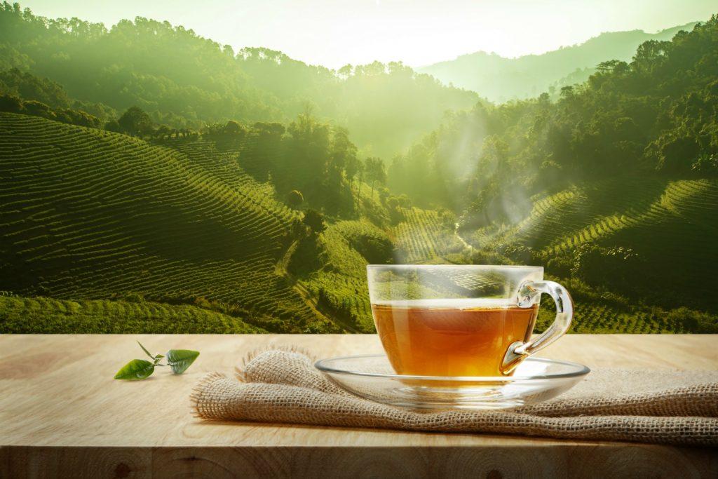 چای خوردن بعد از غذا دریافت کاتچین مورد نیاز در بدن را با کمبود روبرو میکند.