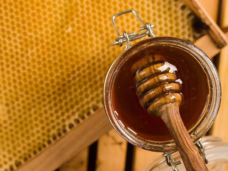عسل با خواص درمانی بینظیر و ویتامینهای متعددی که دارد میتواند به حفظ سلامت موها کمک کند.