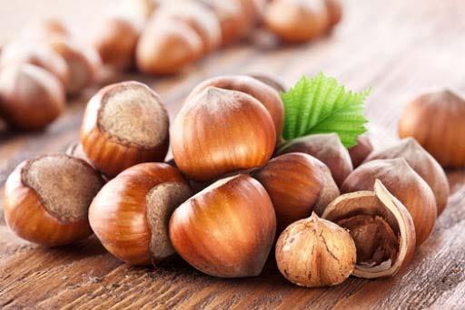 روغن فندق به دلیل در برداشتن ویتامینهای ضروری مثل E تغذیه مفیدی برای مو و پوست سر محسوب میشود.