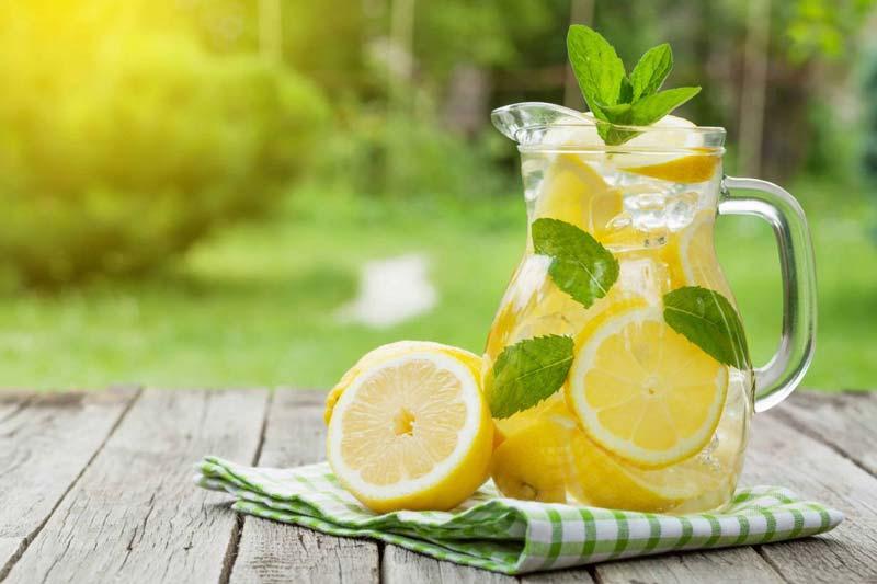 آهن، کلسیم، سدیم، پتاسیم، فسفر، منیزیم، اسید اسکوربیک، اسید سیتریک و ویتامینهایی نظیر A,B,C از جمله مواد مغذی لیمو هستند.