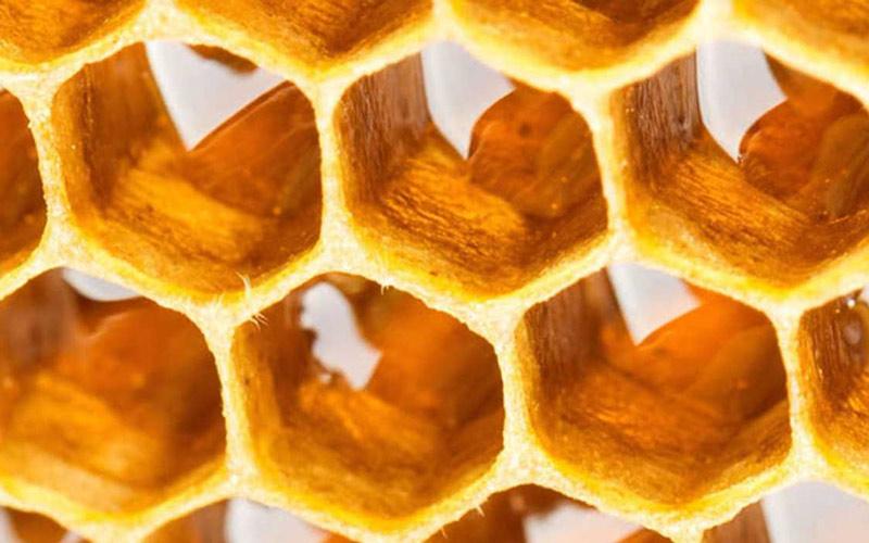 عسل خام برای درمانی بیماریها استفاده میشود.
