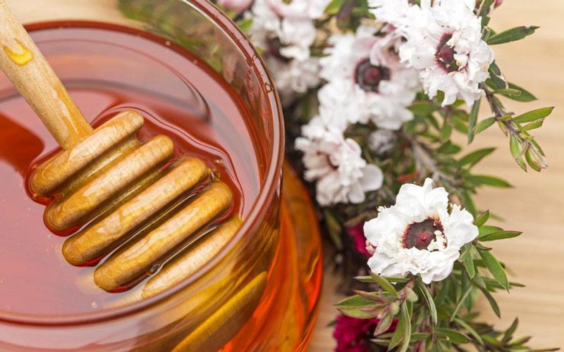 درمان زخم با عسل به راحتی امکان بذیره.
