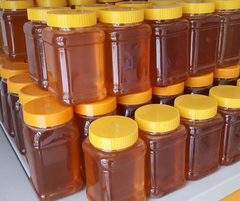 پاکسازی خون و کاهش چربی خون یکی دیگر از ویژگیهای ممتاز عسل زرشک است.