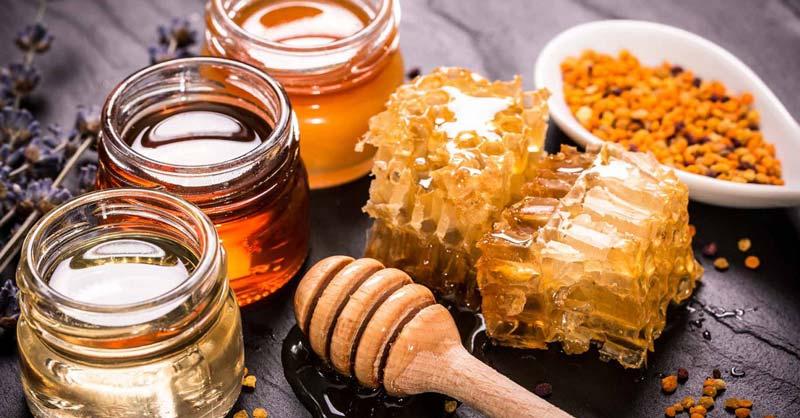 برای بهبود عملکرد دستگاه گوارش، دفع چربیها و مواد مضر و همچنین حفظ استقامت بدن باید از خوراکیهای طبیعی مثل عسل استفاده شود.